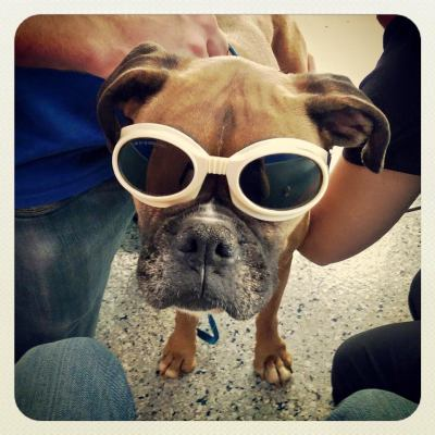 Daisy's Laser Treatment